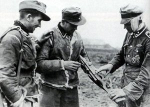 member of the 5th SS-Panzer-Division Wiking