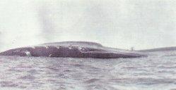 scuttling of the battlecruiser 'Seydlitz'