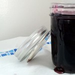 DIY: Concord Grape Jelly