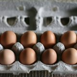 Farm Fresh? Natural? Eggs Not Always What They're Cracked Up To Be