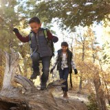 Four STEM Tools to Get Kids Learning and Exploring Outdoors