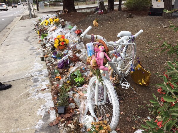 A Young Cyclist's Death Spurs Changes, Lawsuit in ...