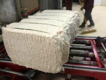 Pima cotton, now in bale form after going through a gin.