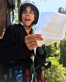 Host Sasha Khokha introduces the show from 100 feet high in a redwood forest.