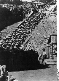 439px-Bundesarchiv_Bild_192-269,_KZ_Mauthausen,_Häftlinge_im_Steinbruch