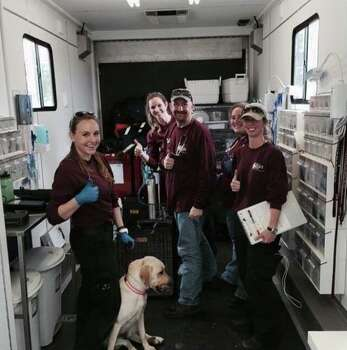 The Texas A&M Veterinary Emergency Team with Maggie the Dog that was found in a tree near Blanco River after  floods hit Wimberley. The team identified Maggie as the pet of the McComb family who went missing when their vacation home was swept downriver during the recent flood. Photo: Courtesy Photo, Courtesy