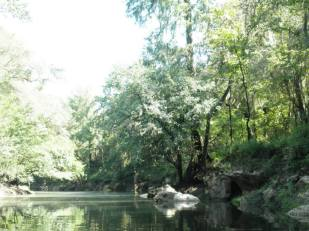 960x720 karst and wood, in Alapaha, by Bret Wagenhorst, 1 September 2014