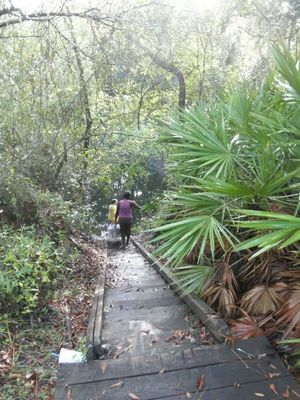 300x400 steps down to the water, in Alapaha, by Bret Wagenhorst, 1 September 2014