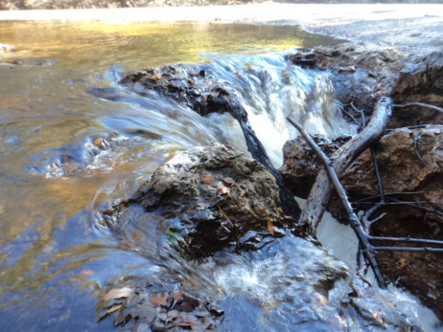 640x480 Flowing fast, in Alapaha River Sink, by Deanna Mericle, for WWALS.net, 11 November 2014