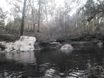 600x450 Limestone, in Statenville to Sasser Landing on the Alapaha River, by John S. Quarterman, for WWALS.net, 15 February 2015