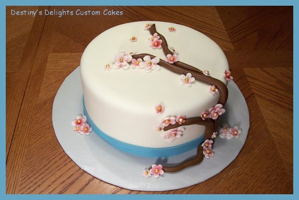 Destiny's Delights Custom Cakes Reviews, Raleigh Cake