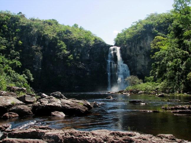 11 de Setembro: Dia Nacional do Cerrado | WWF Brasil