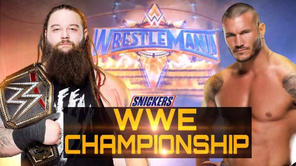 Image result for wrestlemania 33
