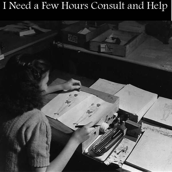 Consult & Few Hours of Help