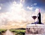 food_vineyard_winery_cask2
