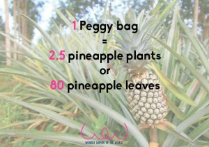 With 1 Peggy bag, 80 pineapple leaves are recycled.