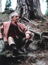 Tolkien sitting under his favourite tree Pinus nigra