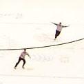 Flying Ref