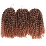 AF-S2-668453 Braid Hair Extensions Curly Crochet Havana Mambo Water Wave Deep Brown Ombre African American Braiding Hair