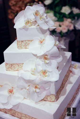 With This Wing: Cake Cutting :  wedding pictures pro pics recap san diego Recepti028 Recepti028