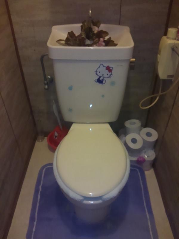 大阪府大阪市にてトイレのみずもれ事例