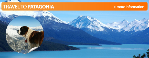 Tours to El Chalten from Calafate