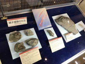 「地球の丸く見える丘展望館」(千葉県銚子市)