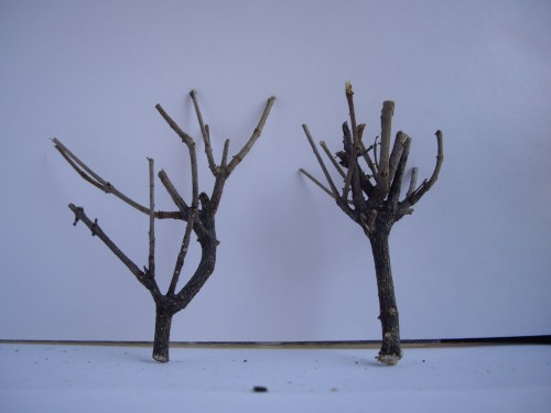 Natural tree branches