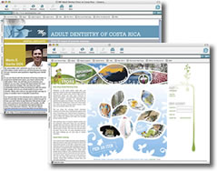 Start a Web Design Business - Work at Home Ideas