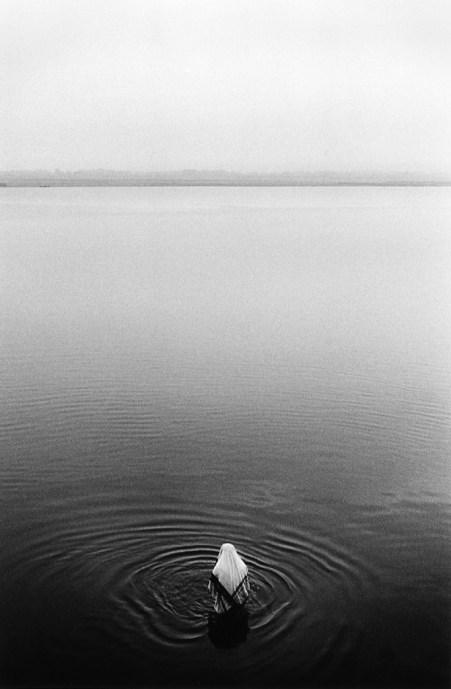 © Walter Rothwell