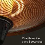 GREADEN – Parasol Chauffant Infrarouge ERIS à Tête inclinable/Orientable Chauffage électrique de terrasse à Halogène 2100W IP44 Radiateur Réglable Extérieur
