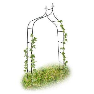Relaxdays Arche à rosiers Romantique courbée avec Pointe métal 2,4 m, Vert