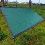 DHMHJH L'abaissement de la température de l'ombre du Soleil Vert Net poussière Taille Floral en Option réseau de Protection Solaire (Taille : 5x10m)