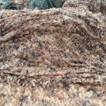 Renforcé Filet De Camouflage Grande Militaire Filet D'ombrage Extérieur Camping Voile d'ombrage Poids léger Durable pour la Chasse xtérieu Sable Camping décoration (Color : 6, Size : 4 * 10M)