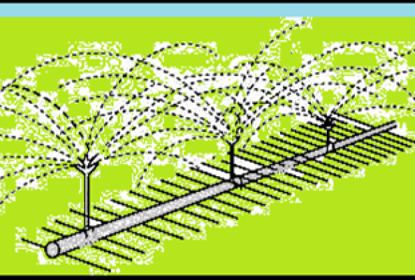 21 Advantages and Disadvantages of Sprinkler Irrigation Systems