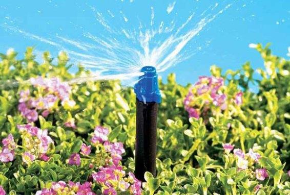 Micro-Sprinkler Heads of drip irrigation system
