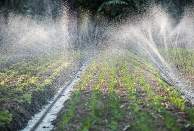 Advantages of Micro Irrigation System