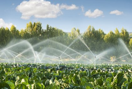 Pressurized Irrigation System