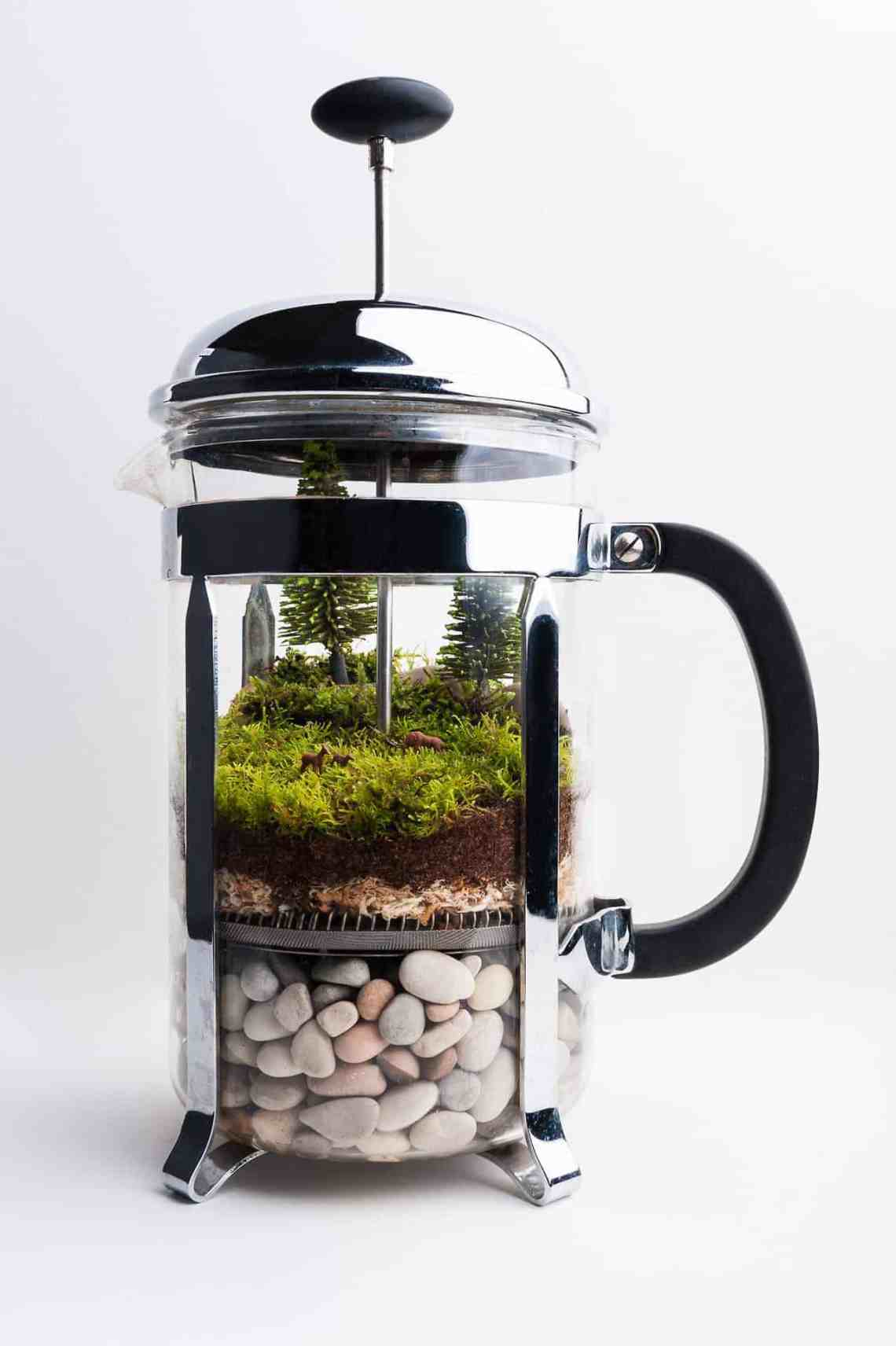 Image Result For How To Make Coffee In A French Press Coffee Maker