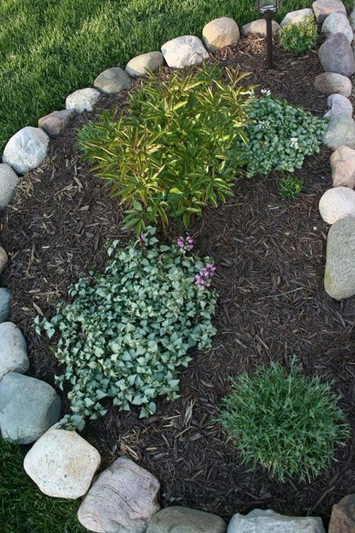Garden Scaping Ideas