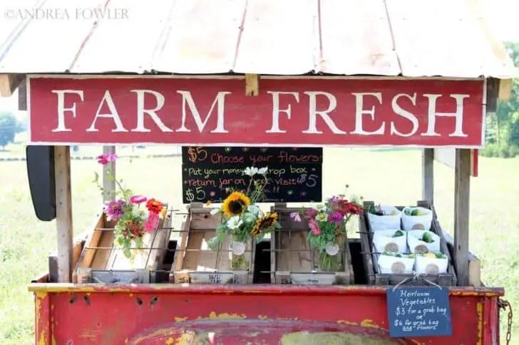 Farm Fresh Near Me