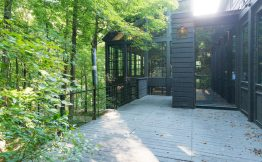 casa-floresta21