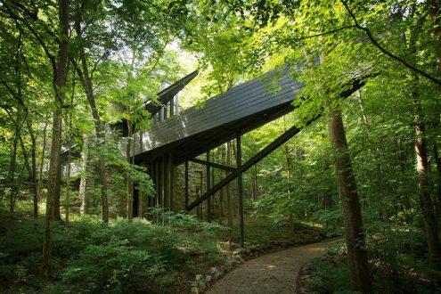 casa-floresta3