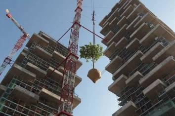 edifício-coberto-por-árvores-6