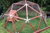 Geodesic-Chicken-Coop-6-640x425