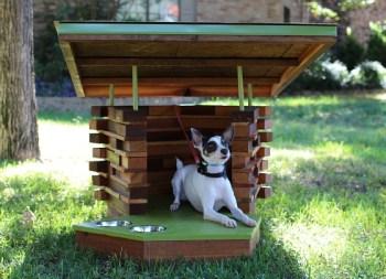 amazing-dog-house-11