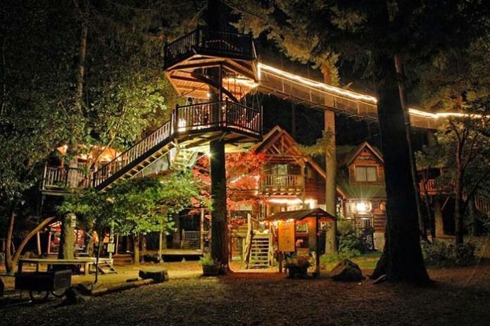 casa_floresta2