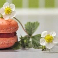 Sommerdrøm 1: Makroner med jordbær