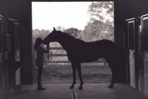 Meisje met haar paard