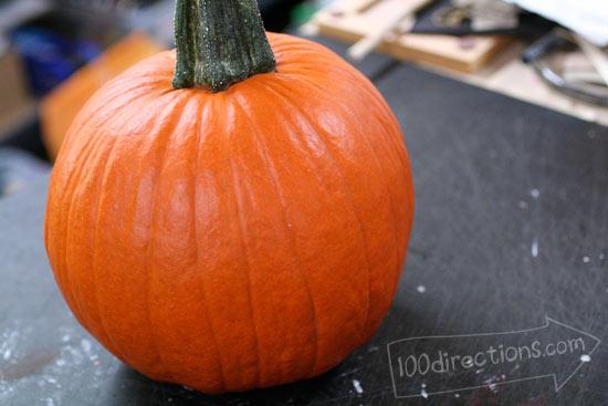 Start with clean, dry pumpkin